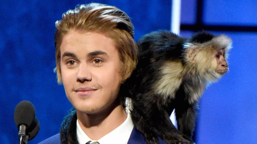 Justin Bieber's Monkey   8 Weirdest Celebrity Pets   InstantHub